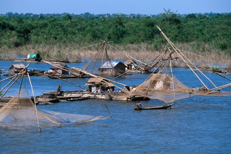 Traditional fishing methods at Kompong Cham on the Mekong river.
