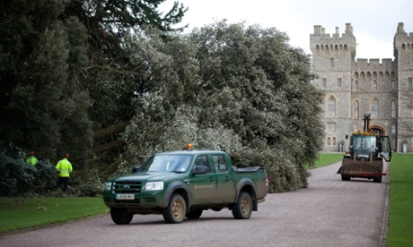 A large storm-damaged tree is felled inside the grounds of Windsor Castle following high winds and rain.