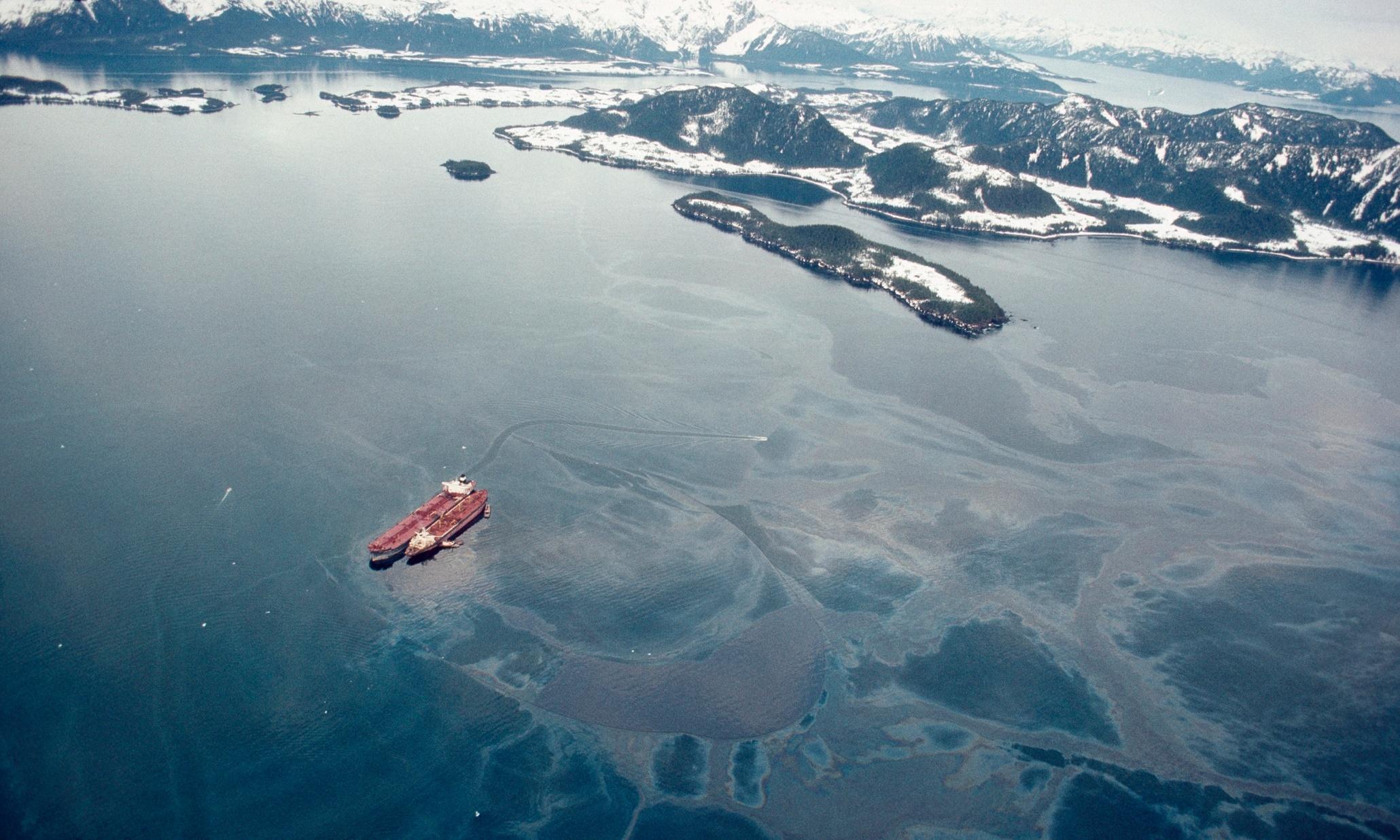 Exxon Valdez oil spill Essays | blogger.com