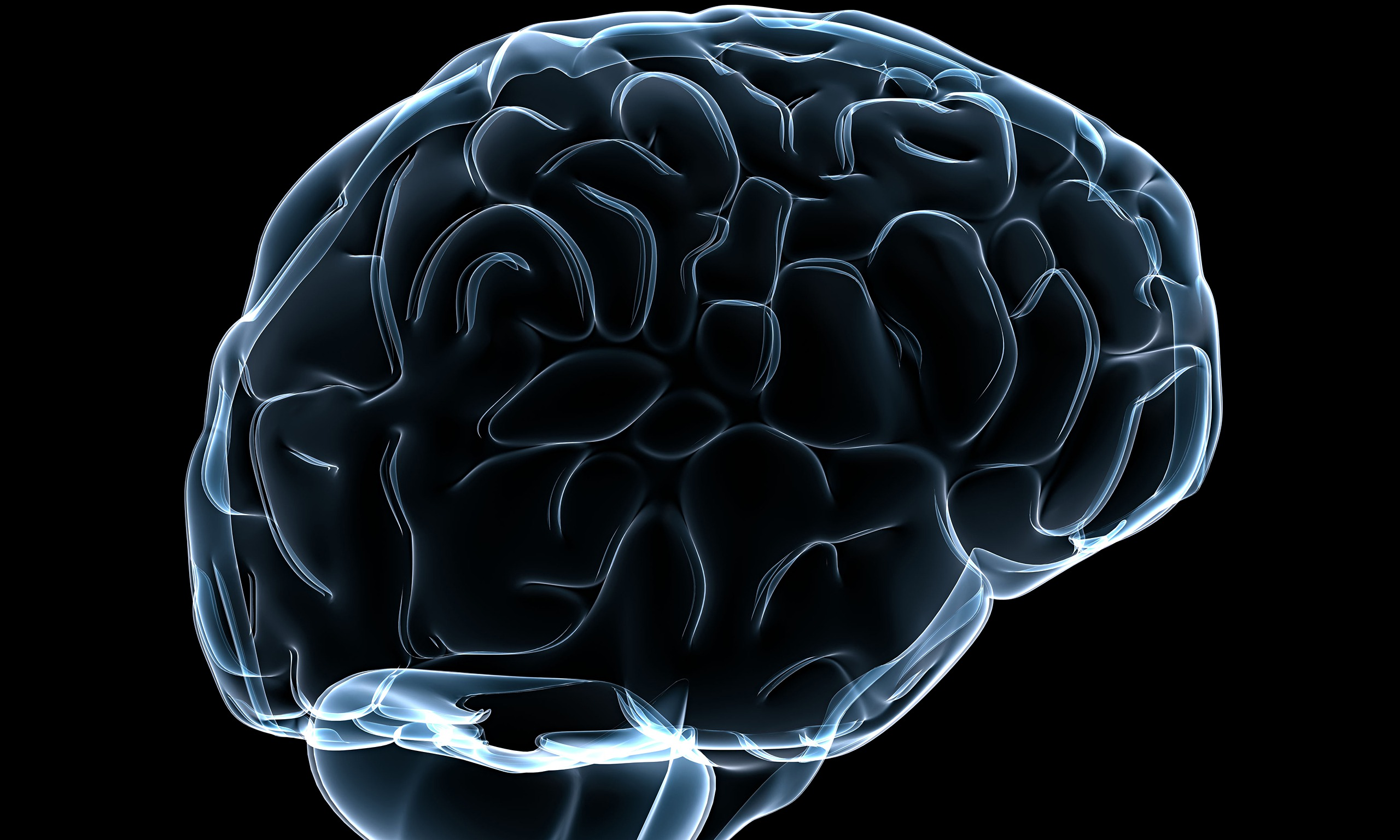 Scientists threaten to boycott human brain project - Brain wallpaper 3d ...