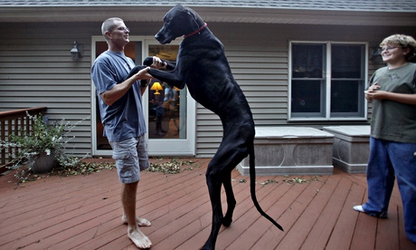 Kevin Doorlag with his great Dane, Zeus, in 2010