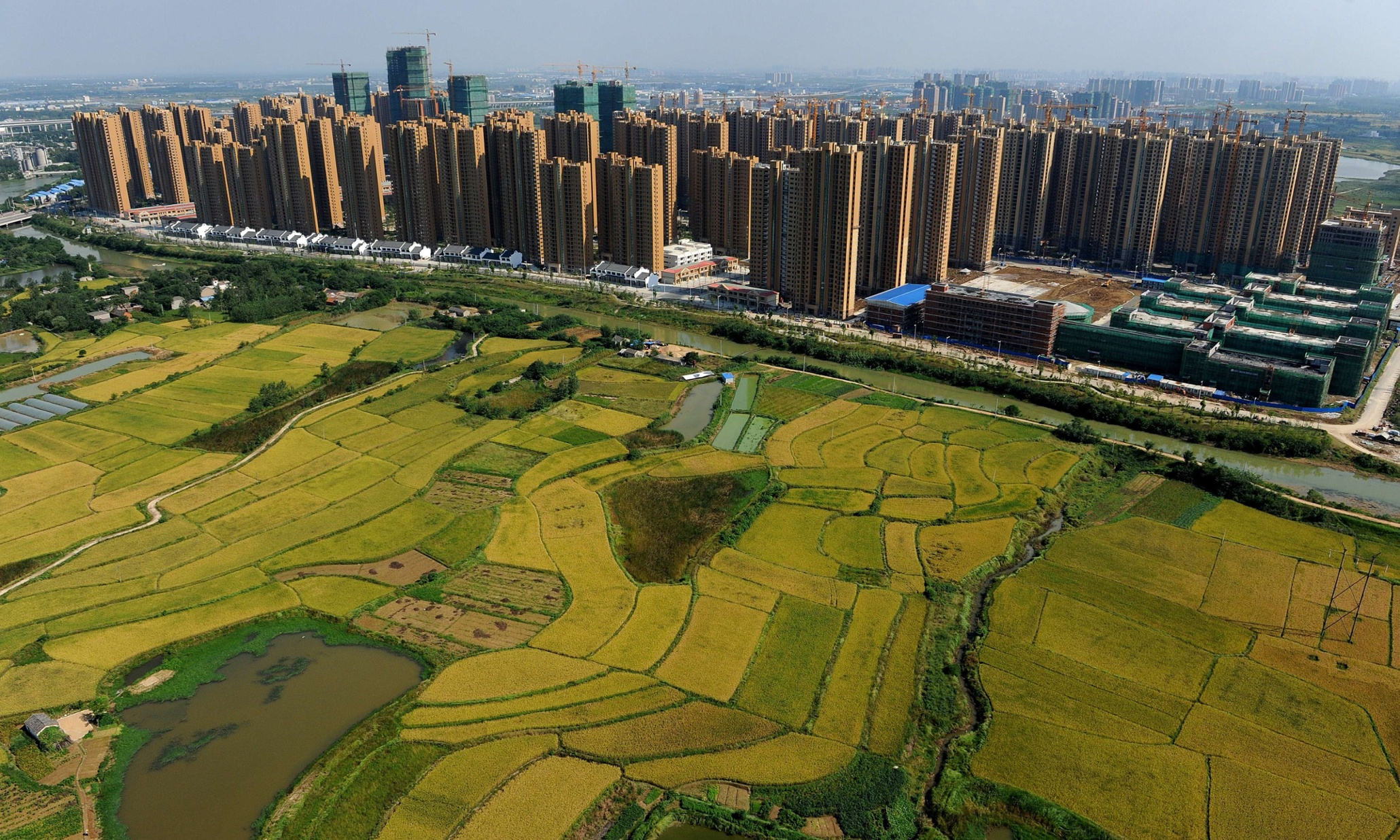 4 ways cities can improve food security | TreeHugger  |China Farmland