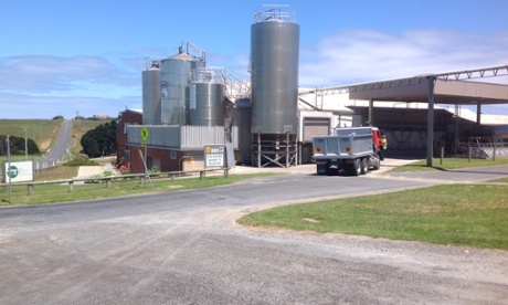 The King Island dairy.