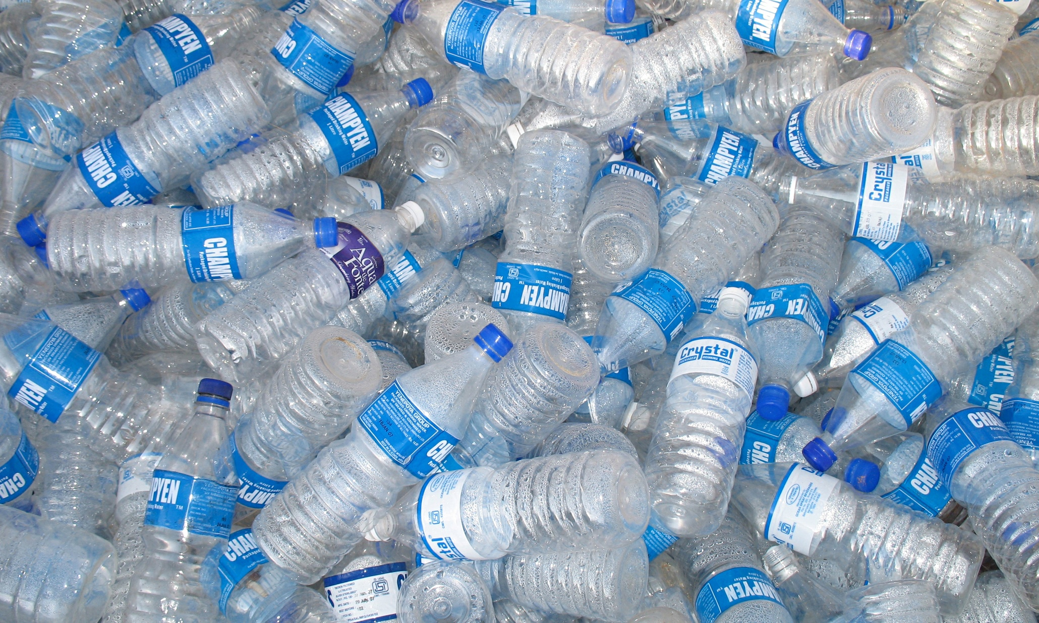 The Cold Truth About Our Thirst For Bottled Water Lucy