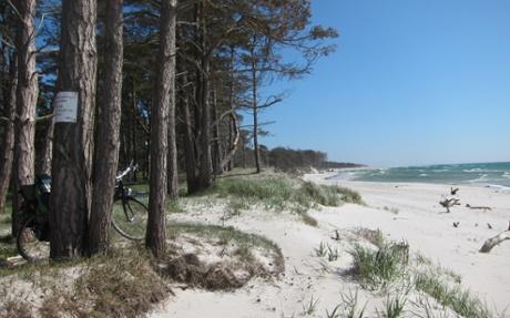 The beach at Dueodde.
