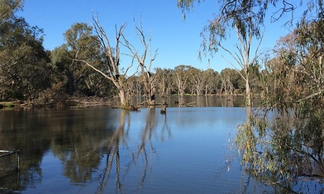 The Murray River, Albury in autumn.
