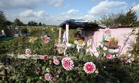 Allotments in Hackney Wick east London