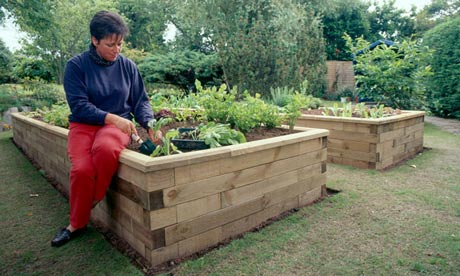 Raised beds made of Woodblocx