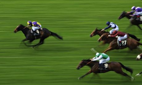 breeding racehorses what price good genes dating