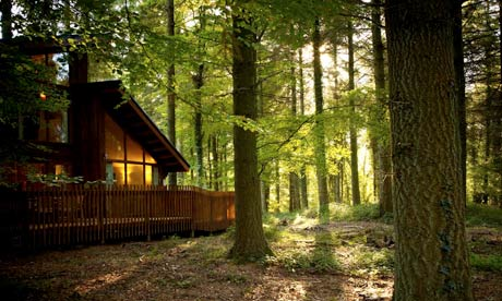 Sherwood Forest, with Forest Holidays