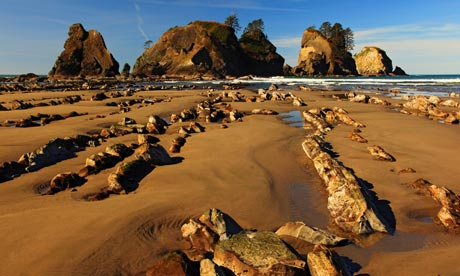 Shi-Shi Beach, Olympic National Park, Washington