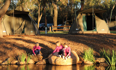 Zoo camping Dubbo, New South Wales