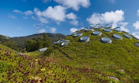 California Academy of Sciences living roof