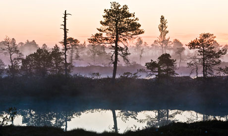Soomaa national park, Estonia